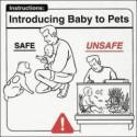 赤ん坊取扱い注意6